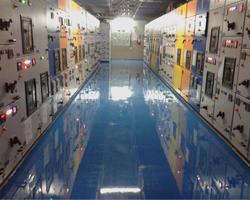Dielectric Paints, Electric Insulator, Dielectric Paints